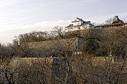 Tsuyama Castle02n3200