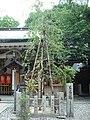 Tsuyu-tenjinsha sakon.jpg
