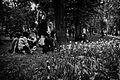 Tulips. (7184017834).jpg