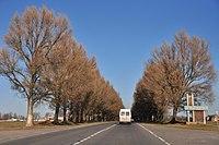 Turynka road.jpg
