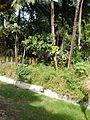 Tuy,Balayan,Batangasjf9755 18.JPG