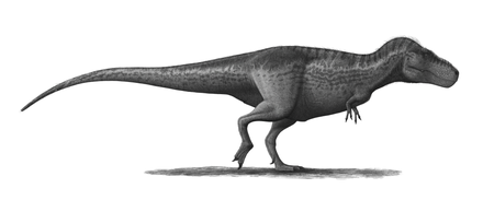 Tyrannosaurus, one of the many extinct dinosaur genera. The cause of the Cretaceous-Paleogene extinction event is a subject of much debate amongst researchers Tyrannosaurus-rex-Profile-steveoc86.png