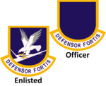 USAF Security Forces beret flashes.png