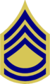 US Army 1948 TSGT Combat.png
