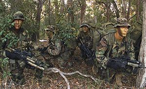3rd Reconnaissance Battalion - Marines from Deep Reconnaissance Platoon, Bravo Company, wait for the word to begin an exercise during Crocodile 2003.