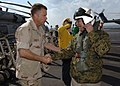 US Navy 060130-N-2838C-003 Commander Carrier Strike Group Two, Rear Adm. James Winnefeld, greets Secretary of the Navy (SECNAV), the Honorable Dr. Donald C. Winter, as he arrives for a brief visit.jpg