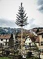 Un arbre de mai.jpg