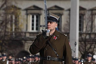 Ceremonial weapon - Polish Army major presenting his sabre in salute.