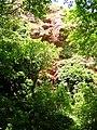 Valley of the Rocks Watcombe Torquay - geograph.org.uk - 16381.jpg