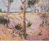 Van Gogh - Baumstämme im Sonnenlicht.jpeg