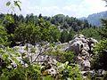 Velebit Biosphere Reserve.jpg