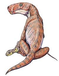 Czy datowanie radiacyjne może być użyte do ustalenia wieku skamielin dinozaurów