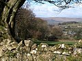 View from bridleway above Bowden - geograph.org.uk - 1228882.jpg