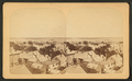 View of Portland, by M. F. King.png