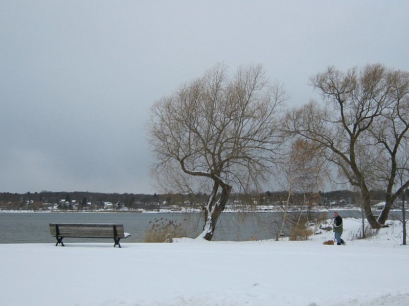 File:View of the shore in Owen Sound - panoramio.jpg