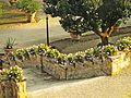 Villa Medicea 152.jpg