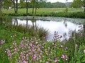 Village Pond, Forest Green - geograph.org.uk - 1294668.jpg