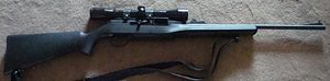 Remington Model 522 Viper - Remington 522 Viper