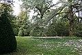 Vue du parc à l'anglaise - jardins de La Croze.JPG