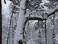 WIELKANOC 13r. Park w bajecznej zimowej szacie ,-))14 - panoramio.jpg