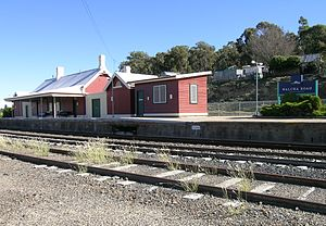 Walcha Road railway station - Station in March 2008