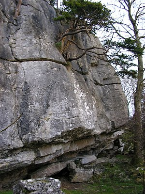 Warton Crag - Pinnacle Crag, a rock-climbing area near the summit of Warton Crag