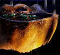 Water Bowl (7105096711).jpg