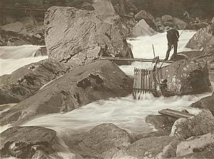 Wenatchi - Historical photograph by Collier, B.C. Man holding spear stands on rocks in the river above a fish trap