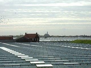 Westland (municipality), Netherlands Municipality in South Holland, Netherlands