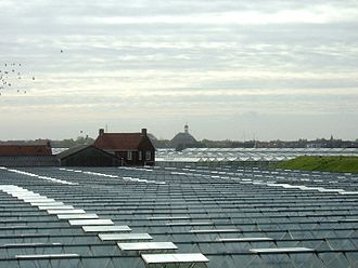 Westland (municipality), Netherlands - Greenhouses near 's-Gravenzande