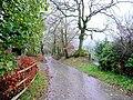 Wet lane at Bryn-Bran - geograph.org.uk - 1578882.jpg