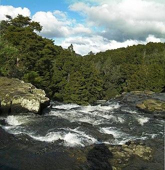 Tikipunga - Image: Whangarei Falls New Zealand (2)