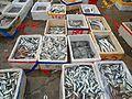 Wholesale fish market at Haikou New Port - 02.jpg