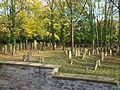 Wiesloch-Jüdischer-Friedhof-2012-58.JPG