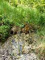 WikiProjekt Landstreicher Geotop Eistobel 13.jpg