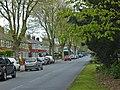 Willerby Road, Hull - geograph.org.uk - 416721.jpg