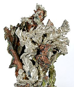 Silver and copper mineral specimen from the old Wolverine Mine
