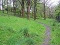 Woodland area at Edinburgh Park (4) - geograph.org.uk - 1270937.jpg