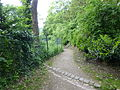 Wuppertal Hardt 2014 075.JPG