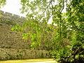 Xuanwu Lake2.jpg