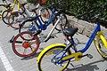 Youon, Mobike Classic, Bluegogo, Mobike Lite, and Ofo bikes.jpg
