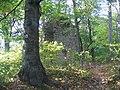 Zřícenina hradu Holštejn.JPG