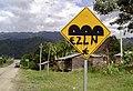 Zapatista Army of National Liberation (EZLN) graffiti in Chiapas, Mexico.jpg
