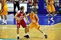 Zoran Planinic and Darko Sokolov.jpg