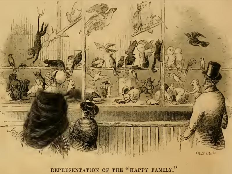 """File:""""Happy Family,"""" at Barnum's American Museum, New York City.tiff"""