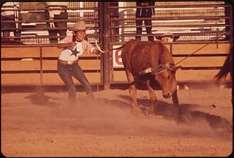 Colorado River Indian Tribes - Junior Rodeo on the Colorado River Indian Reservation, 1972