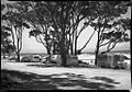 (Camping ground with caravans and tents) (Frank Hurley) (10827982723).jpg
