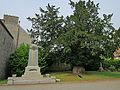 Église Saint-Vigor de Carolles - Monuments aux Morts et If centenaire.JPG