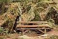 Αισθητικό Δάσος Καισαριανής 8.jpg
