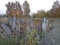 Єврейське кладовище, вул. Микулинецька (фото 4).JPG